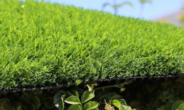 Artificial Grass Evergreen-54 Green on Green