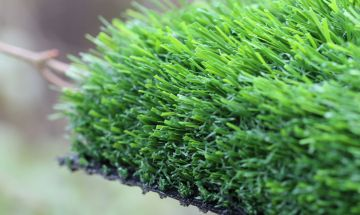 Artificial Grass Evergreen-80