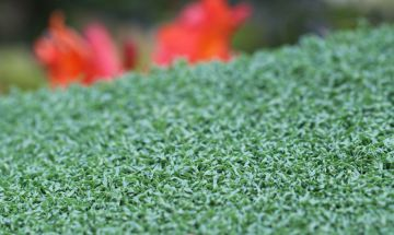 Artificial Grass Putt-40 Emerald