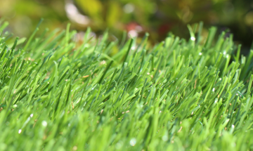 Artificial Grass Spring-46