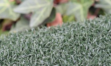 Artificial Grass Tee Line-120