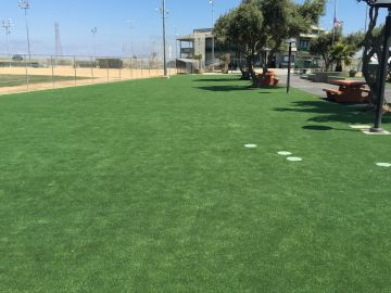 Synthetic Grass Cost Merrillville, Indiana